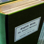 Round back case binding