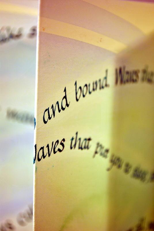 bound book arts exhibition celebrates unesco world book day