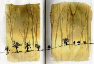 Book Arts Meg Green Some Odd Pages Surrey UK